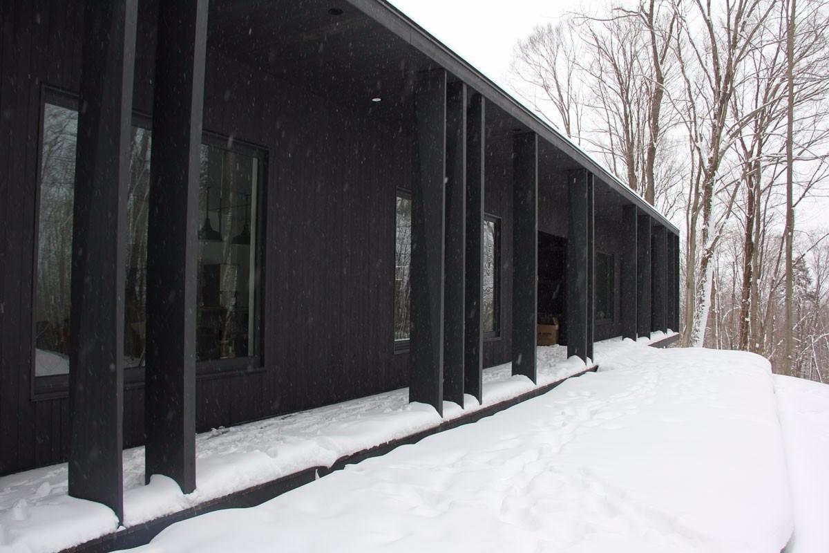 Черный дом контрастирует с заснеженным зимним лесом.