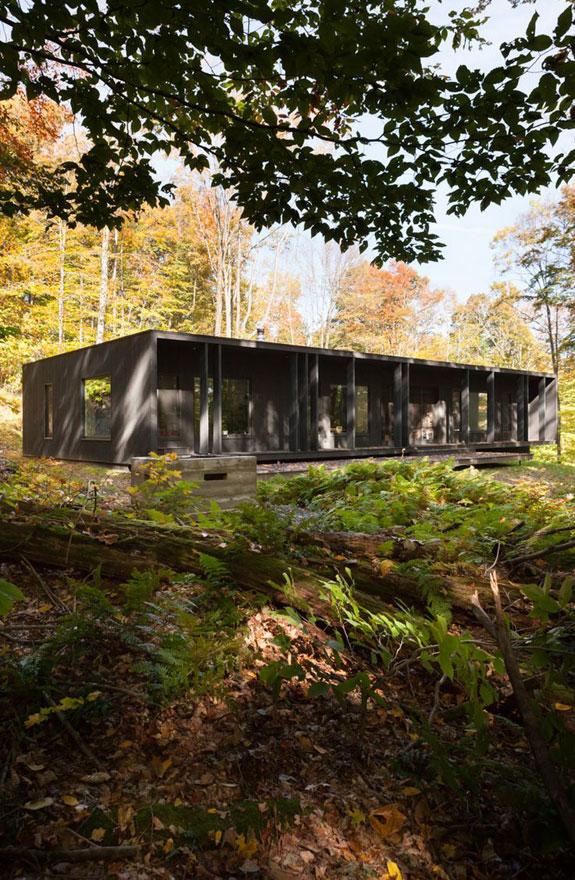 Дом органично вписывается в лесной пейзаж.