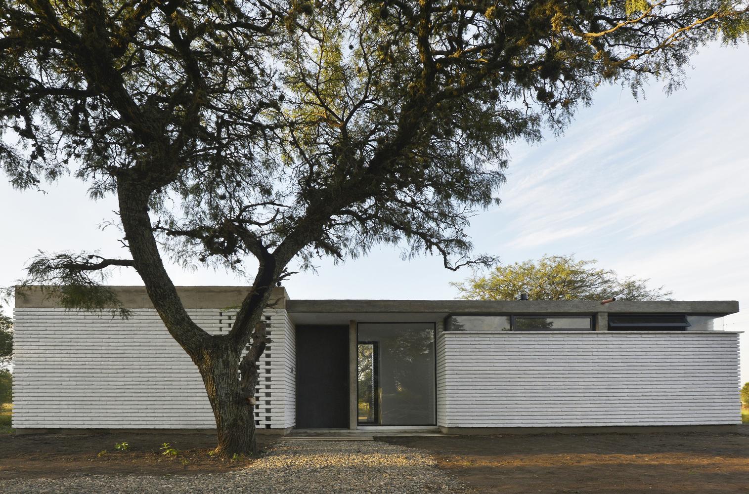 Сохраненное дерево у входа в дом украшает дом.